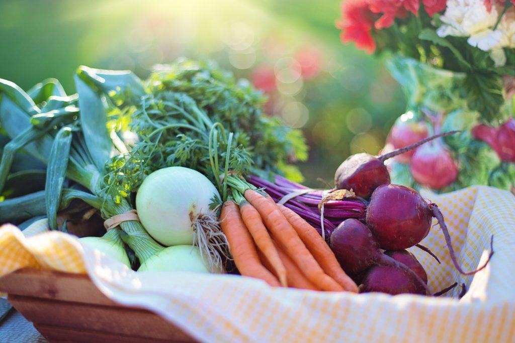 agriculture-basket